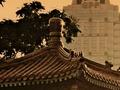 Sun Sets Over The Temple in Lumpini Park